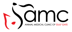 Animal Medical Clinic of Gulf Gate